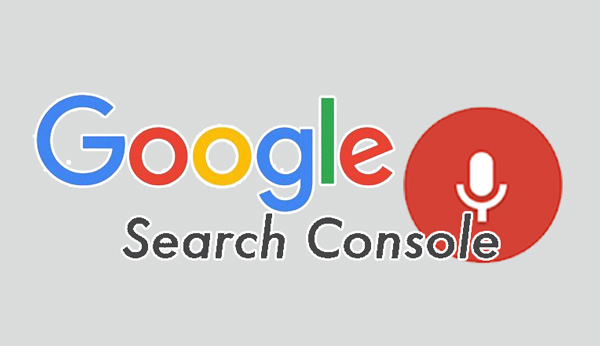 google-console-voice-search