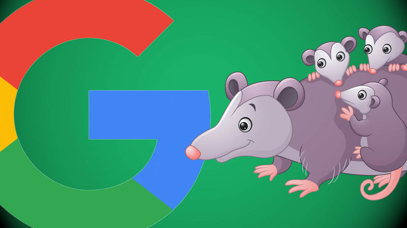 google-update-local-algorithm-possum